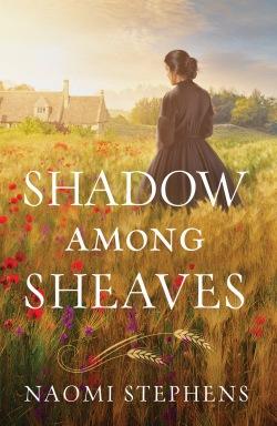 Shadow amonght Sheaves