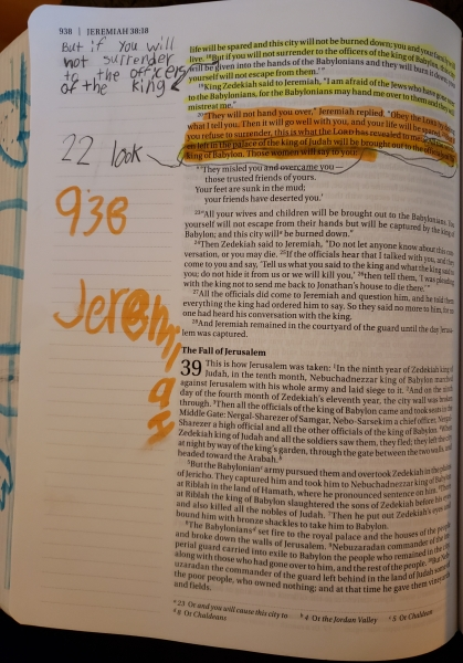 """Bella's """"annotations"""""""